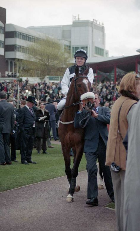 Racehorse Moscow Flyer with Jockey Barry Geraghty